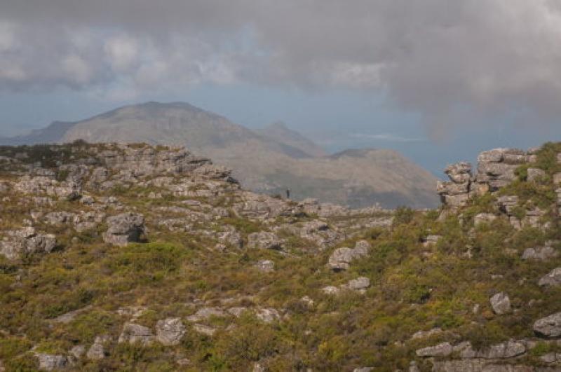 Vue depuis Table Mountains - Cape Town - Afrique du Sud
