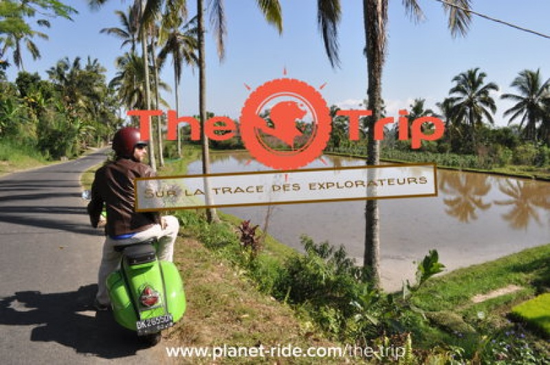 The Trip Manager - Bali