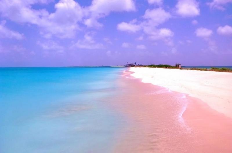 Plage sublime - Harbour Island - Bahamas