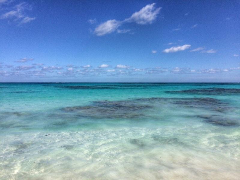 Plage de rêve - Cove Eleuthera Hôtel - Bahamas