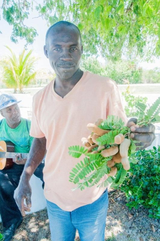 flore - Eleuthéra - Bahamas