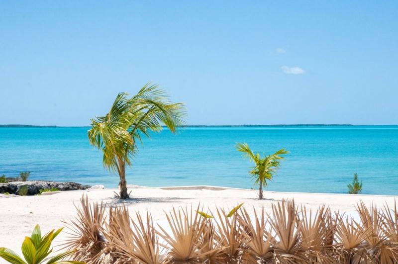 Plage - restaurant - Eleuthera - Bahamas
