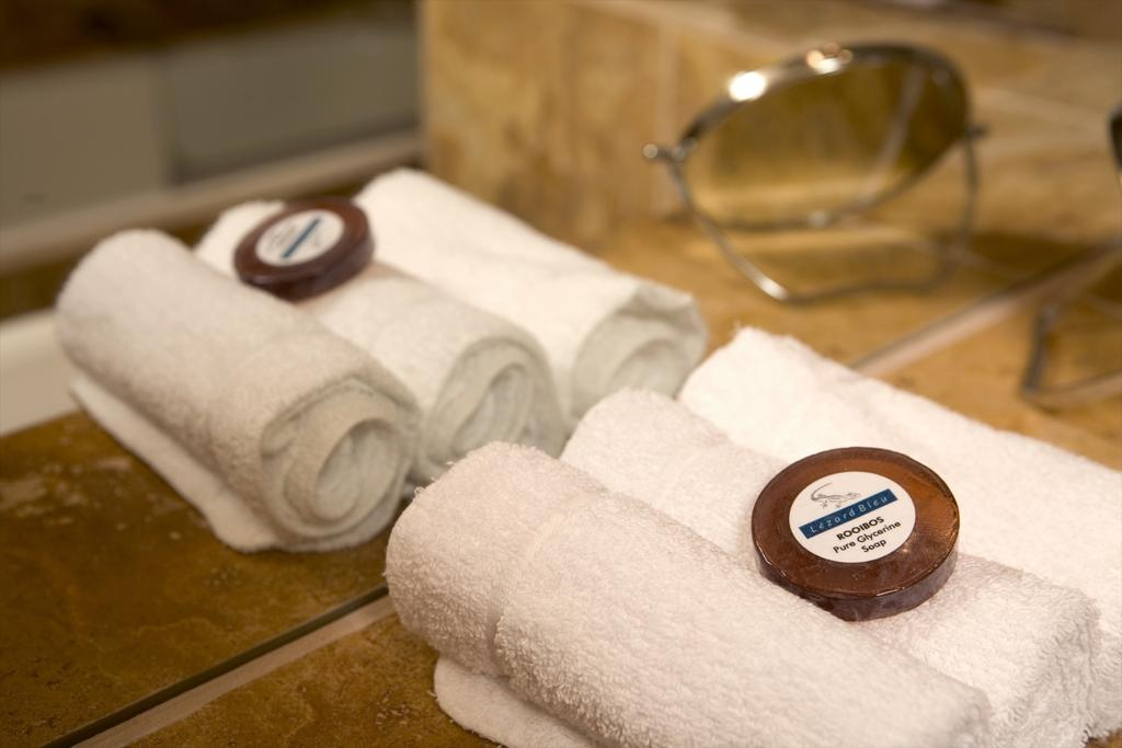Salle de bain - Lézard Bleu - Afrique du Sud