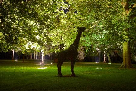 Une girafe - Stelsia Château