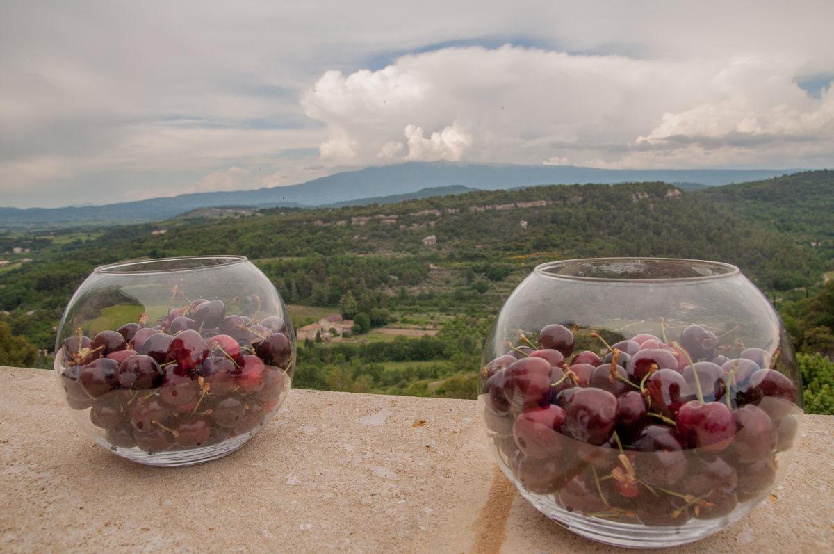 Voyage en Vaucluse : déguster les cerises de Vénasque