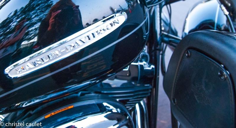 Harley Davidson - Griffith Park à Los Angeles - road-trip USA
