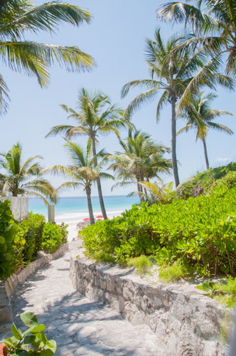plage - Coral Sands Hotel - Bahamas