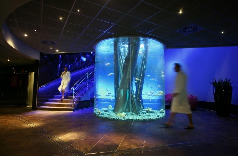 Dans les salles de soins avec un aquarium géant