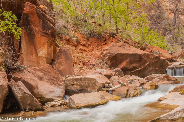 Au Zion Canyon - road-trip USA