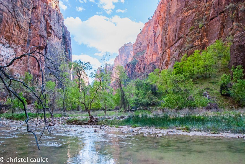 Roadtrip USA : Découvrir le Zion Canyon