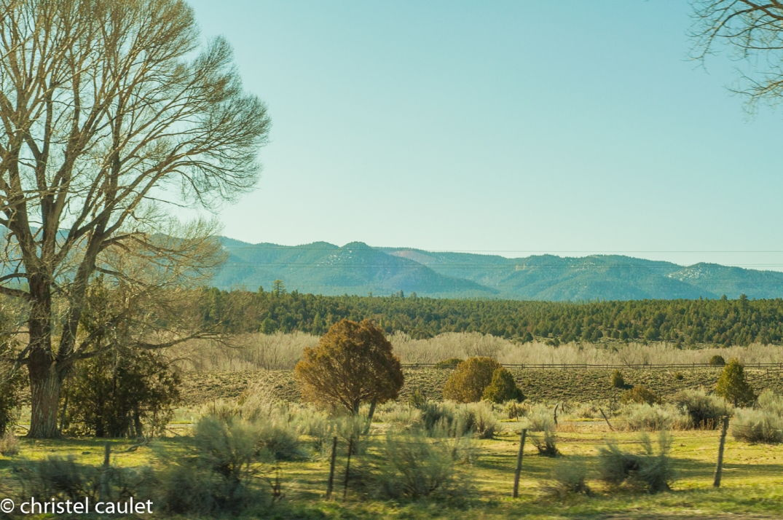 Le matin, les lumières sont fantastiques au ranch Bauers