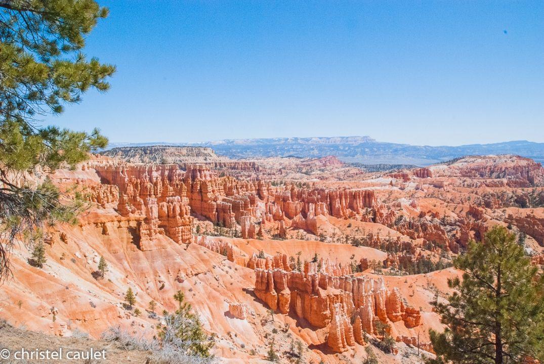 beauté incroyable à Bryce Canyon - Roadtrip Etats-Unis