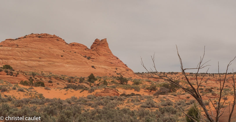 Road-trip USA : On a survécu au désert de Buchskin Gultch ! 10
