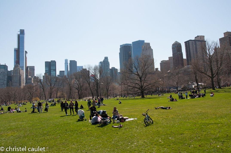 A Central Park, on fait le plein de verdure