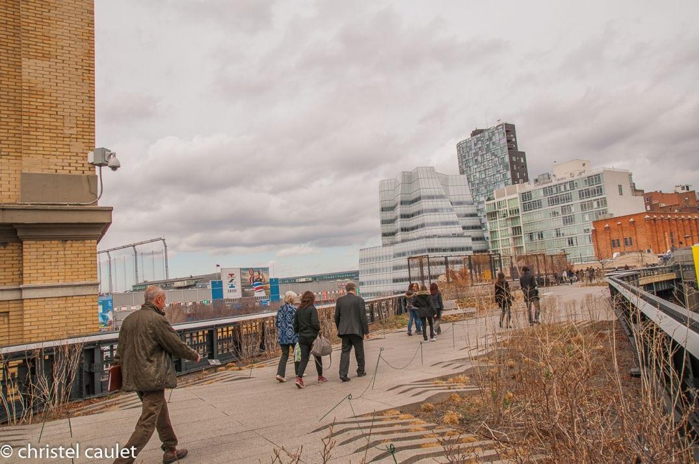 Balade sur la High Line à New York