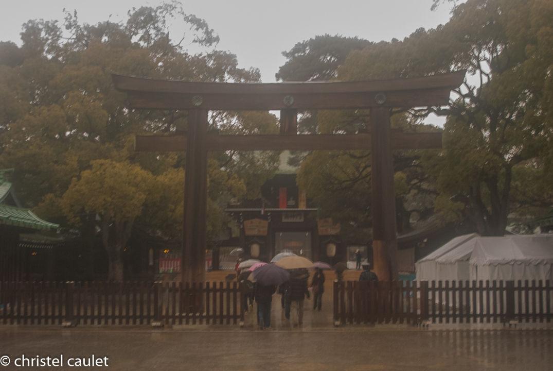 Dans les jardins impériaux à Tokyo