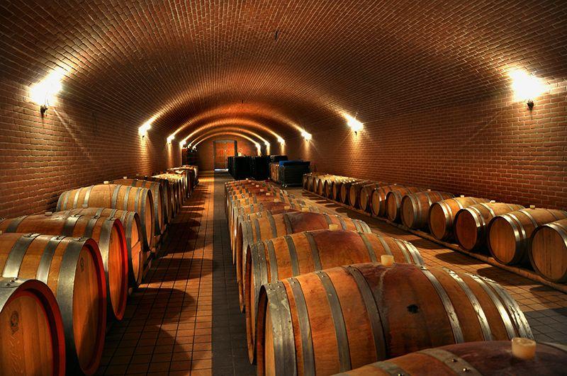 Dans la cave à Oenovilla à Bordeaux