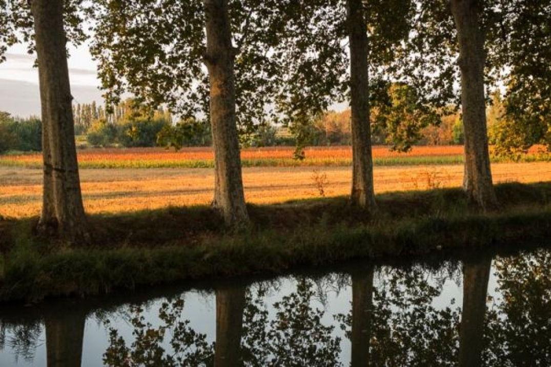 Voguer sur le Canal du Midi en voyageant stylées 02