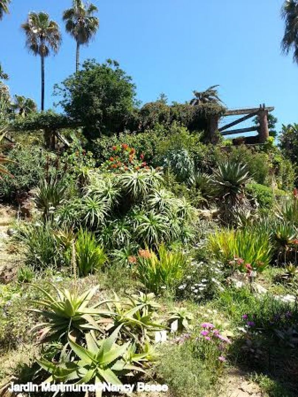 Voyage : Le jardin botanique Marimurtra à Blanes 01