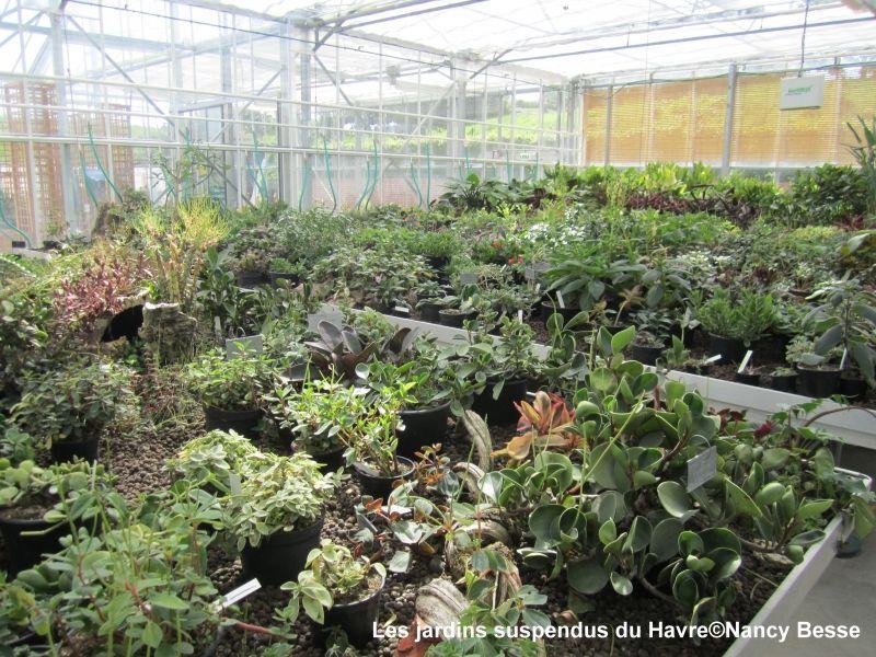 Voyagez stylées : Les jardins suspendus du Havre 2