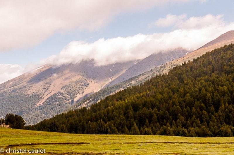 Vallée verdoyante en Andorre