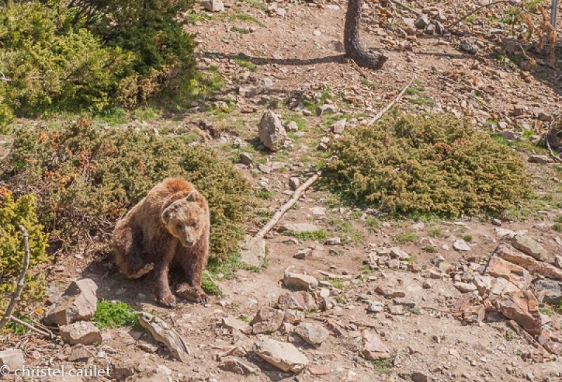 Voyagez stylées : Naturlandia en Andorre 08