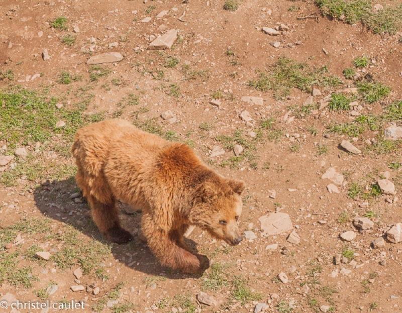Voyagez stylées : Naturlandia en Andorre 09