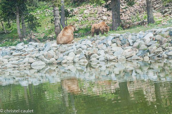 Voyagez stylées : Naturlandia en Andorre 12
