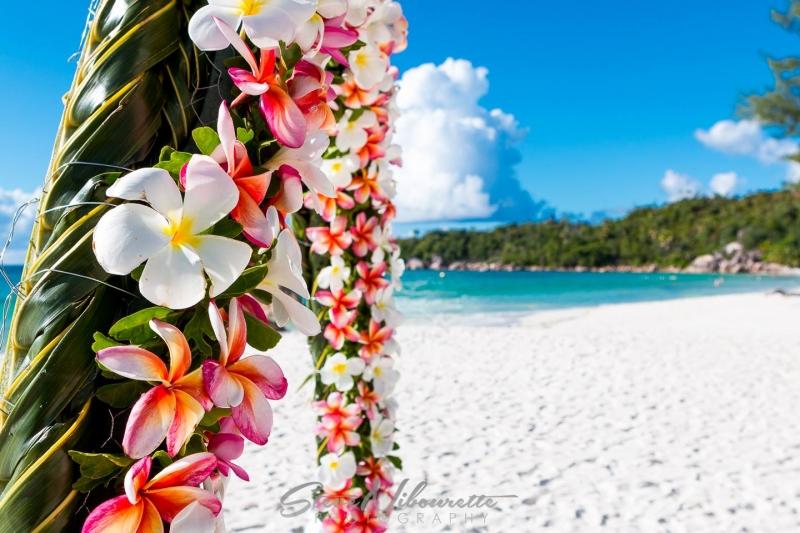 Plages de sable fin aux Bahamas DR : Steeve Nibourette