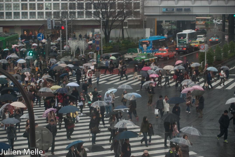 Un million de personnes traverse chaque jour ce passage clouté à Tokyo