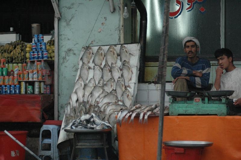 Au marché devant la poissonnerie à Kaboul