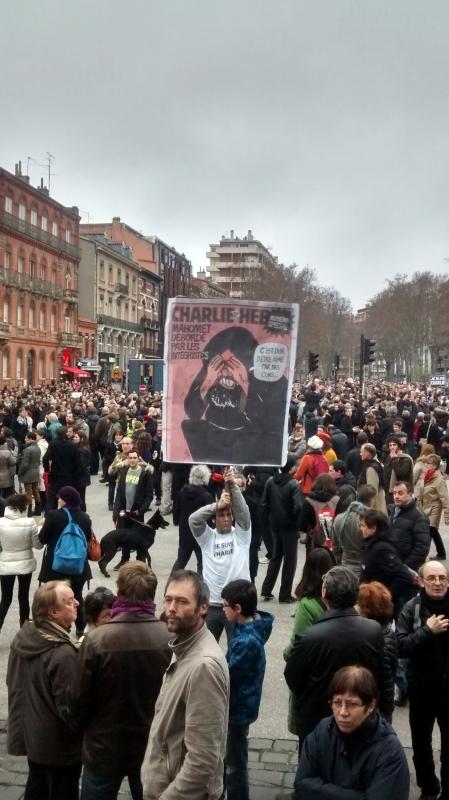 Les gens indignés dans les rues de Toulouse