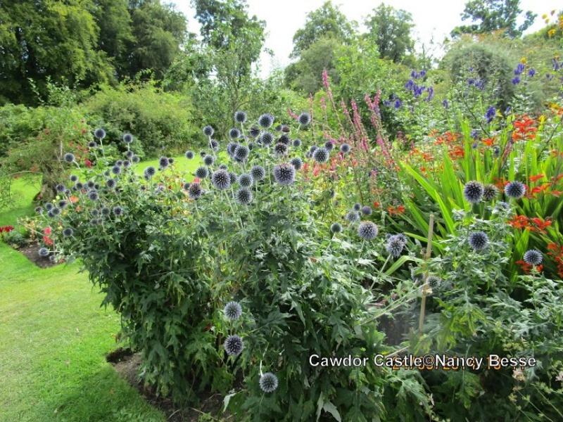 Un jardin de fleurs au Cawdor Castle en Écosse