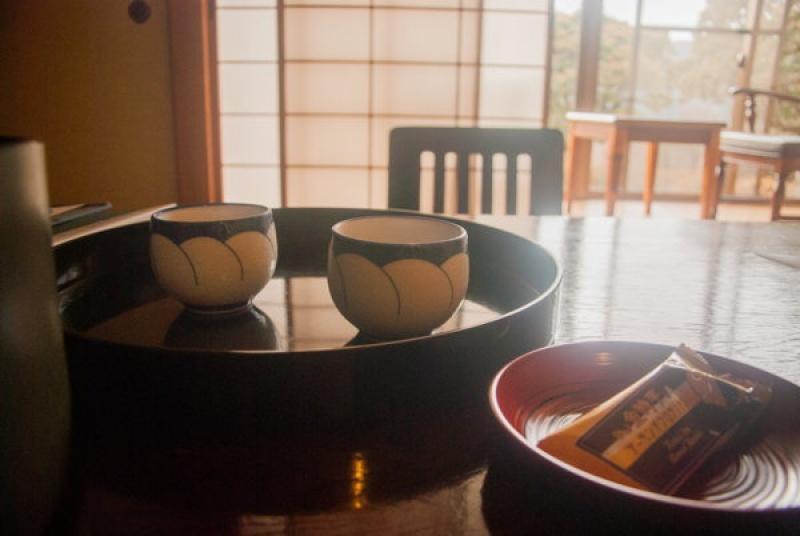 Un thé au Mont Fuji au Japon