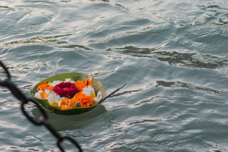 Des couronnes de fleurs sur le Gange, en Inde à Haridwar