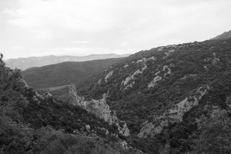Les Pyrénées sont en arrière fond