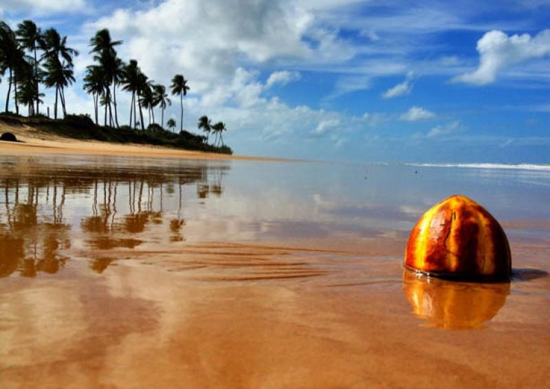 La plage de sable blanc du Butterfly House Bahia au Brésil