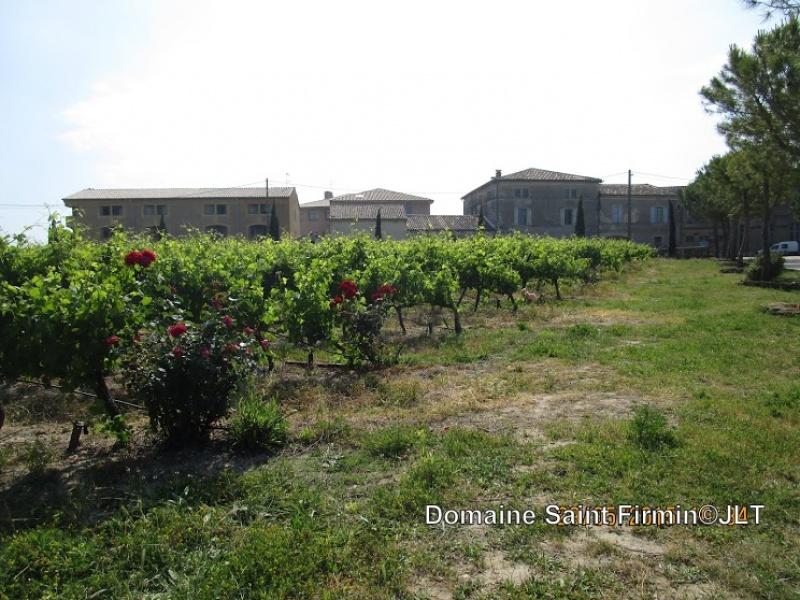 Domaine Saint-Firmin : des vins AOP au cœur de l'Uzège