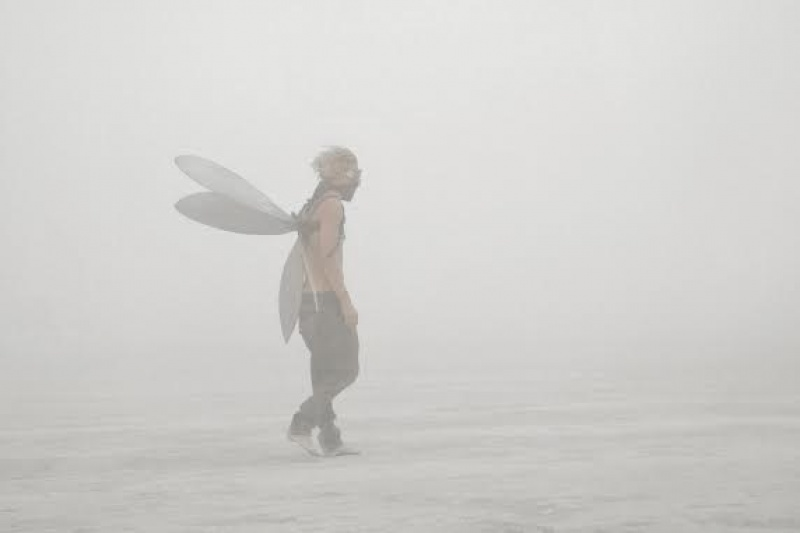 Un papillon ? Non, juste quelqu'un à Burning Man - Etats-Unis