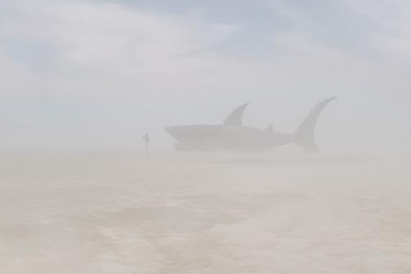 Un requin à l'horizon ? On voit de tout à Burning Man - Etats-Unis