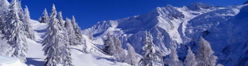 Vallée enneigée à Chamonix